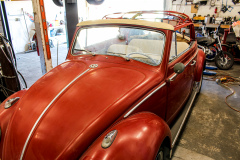 1962-volkswagon-beetle-6